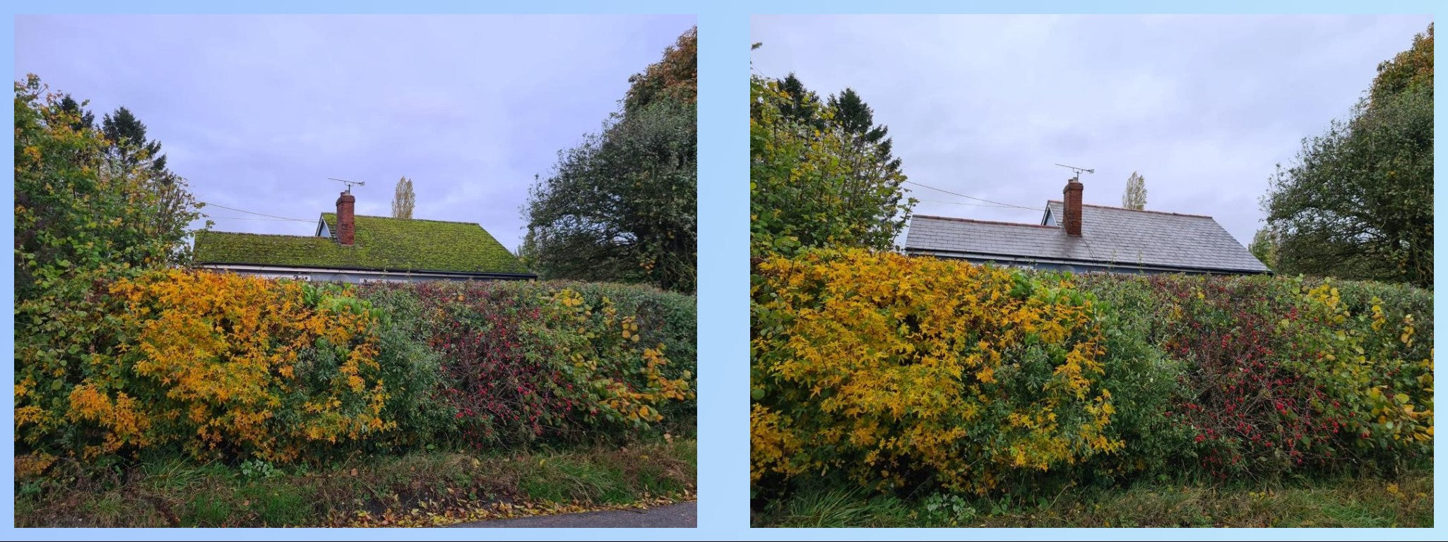 roofanddrivewaycleaning.co.uk roof_moss_removal_berkshire